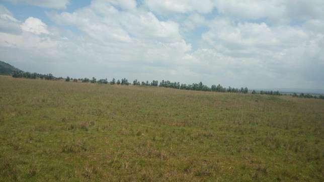 Vacant Land in Nyahururu Mairo inya.96 Acres.Adjoing Lake Olboosast . Shamata - image 1