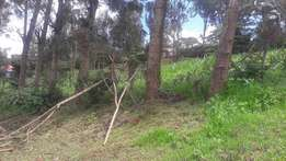 1/4 an acre for sale in Matasia