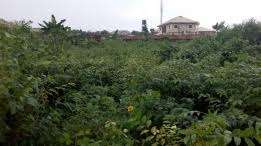 Houses and land of all kind for sale in GRA and environs