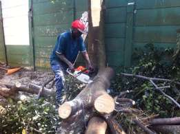 Tree felling, Landscaping and Garden Services