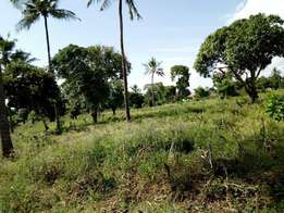 •Land for sale at Tezo •Distance from tezo trading centre mombasa mali