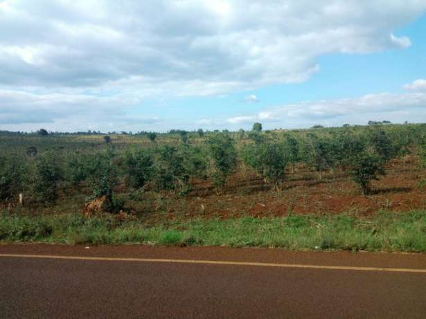 Quick sale 1 acre second row from mati rd meru county. Huruma - image 5