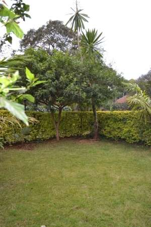 Beautiful 4 brm town houses Lavington Kitisuru - image 8