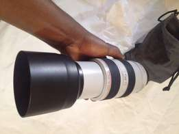 Canon 70-300mm ultrasonic L lens