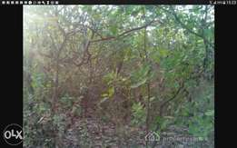 1.48 hectare of land for sale
