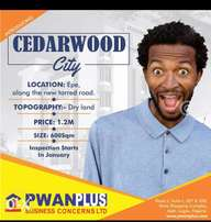 Cedarwood City