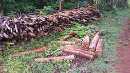 Firewood suply