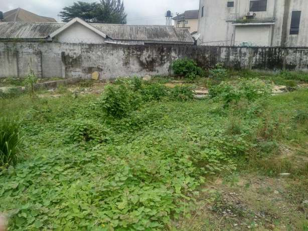 2 plots for all purpose in rumuobiakani ph Port-Harcourt - image 2