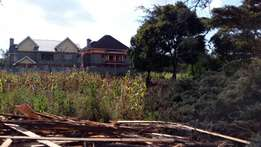 2 plots 1/8 of an acre in ngong 46