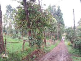 Gitaro 1/4 acre plot