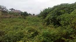 1Plot of Land in Measuring 60by120 for Sale at Breeder Axis Oba-Ile