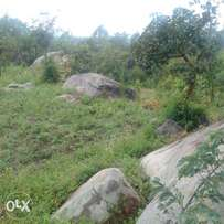Rocky 1/4 (Quarter )Acre Land in kanduyi outskirts Quick sale