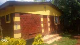 1bedroom ext. In amboseli lavington1