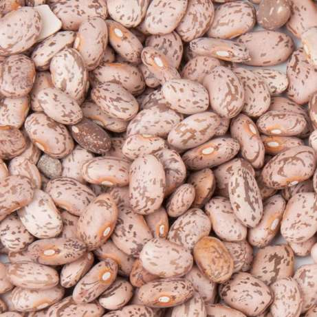 Dry beans on wholesale Kawangware - image 3