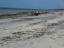 Beach plot for sale in shimoni,south coast