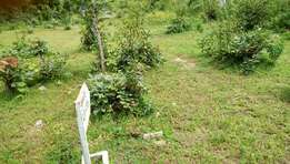 One acre of land (8 plots of land) at Ogele beside Eiyekorin Area
