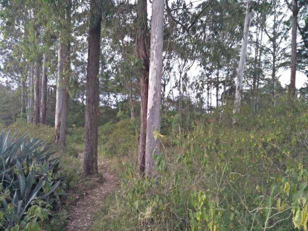Land in Matasya Ngong, 8 Acres for sale Parklands - image 5