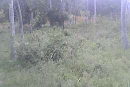 1 acre for sale in Gede 7km from malindi towards tsavo