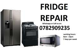 Fridge, stove, ovens, tumble dryers and microwave repairs R250