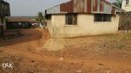 A fenced 50 x100 land for sale in well developed area of Asaba