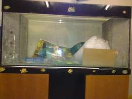 Large Fish tank with cabinet for sale
