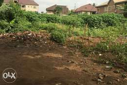 8 Plots of Land For Sale At Morenikeji Village by Agbado Crossing.