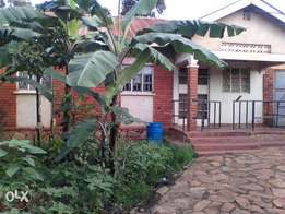 House for sale with rentals