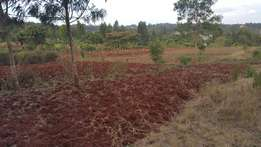 50x100 plot for sale 100 meters from tarmac at Gikambura