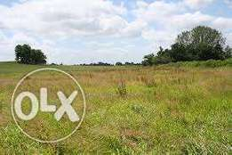 1000 Square meter Land for sale