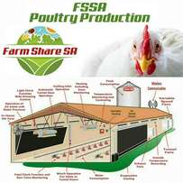 Chicken and Poultry farming Opportunities