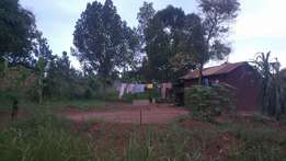 12decimal plot on sale in Namugongo at 22M