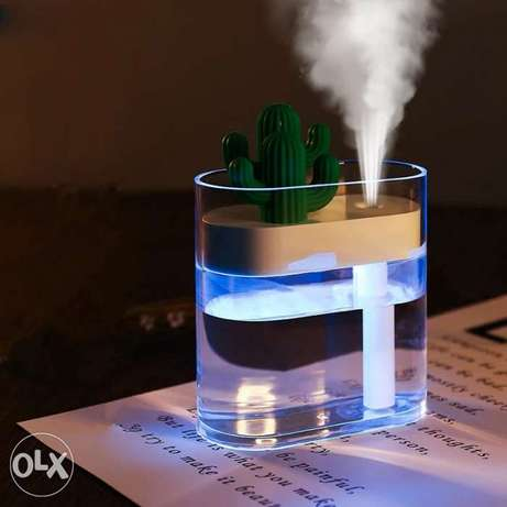 Oil Diffuser Indoor Outdoor USB Cactus Mini Humidifier