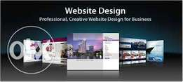 Website Designing and seo