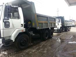 TATA and ASHOCK LEYLAND tippers for lease