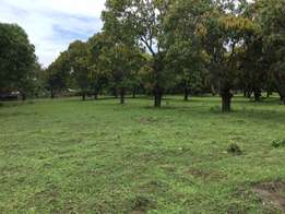 land for sale in utange