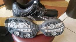 New Spalding Golf shoes