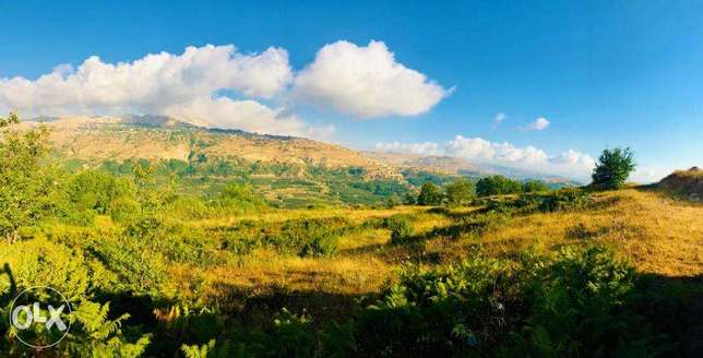 Land in Fakra (AHLAM village) with MOUNTAINS VIEW أرض في فقرا ٣٣٠٠ م ٢ فقرا -  8