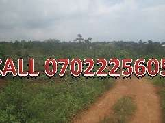 Special 70 by 100ft plot for sale in Namugongo-Kasayi at 11m