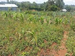 1 acre piece of land in Muguga for sale.
