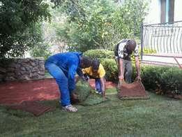 Greenmaster instantlawn compost and topsoil.