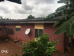 6 bedroom bungalow for sell