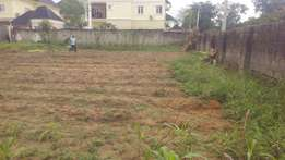A plot in a developed area buy and build