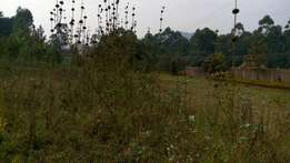 Gensonso plot for sale 5 million