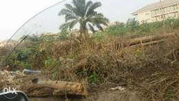 Almost full plot of land In an estate at ogba . C of O. N8,5mill