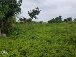 One plot of land at oke baale osogbo
