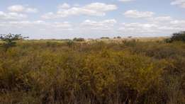 120 Acre prime land in Kajiado - Kaputei South