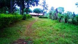 8 acres of land in Buhesi, Kabarole district for sale at 110M Neg.