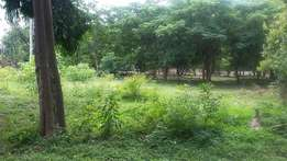 MIRAMAR PROPERTY SOLUTIONS..Extra Large plots for sale in mtwapa