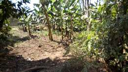 A good titled plot of 90ft by 40ft in namugongo at 27m
