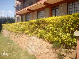 2bedroom Flat on Thion'go Road 25k